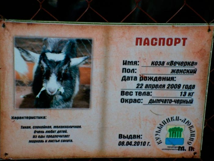 паспорт козы