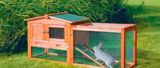 крольчатник