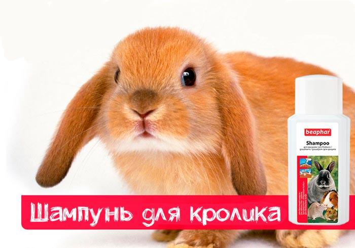 шампунь для кролика