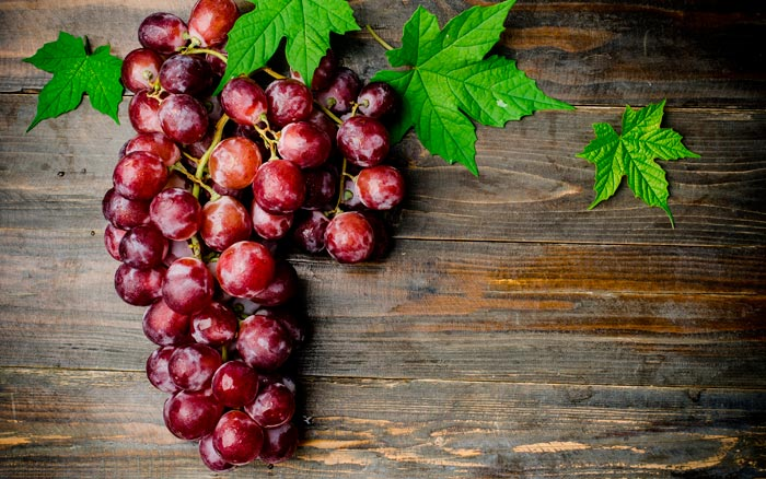 Можно ли кроликам давать виноград и его листья
