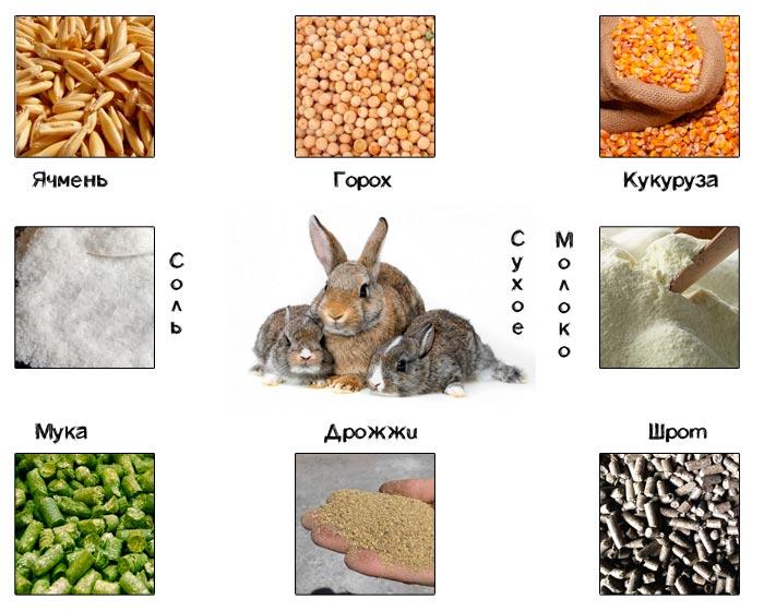 состав корма для кроликов