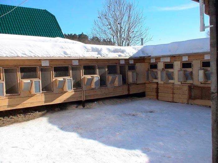 кроличьи клетки зимой на улице