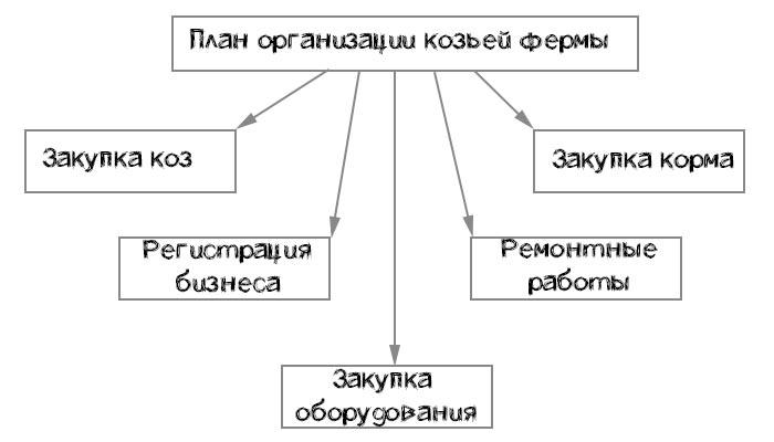 план организации фермы