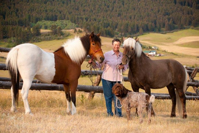 содержание лошадей
