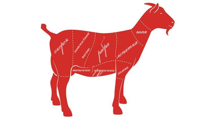 разделка туши козы