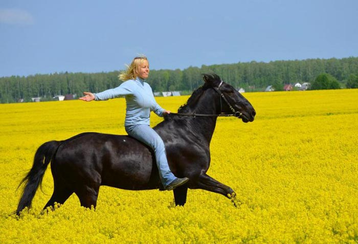 скачка на лошади