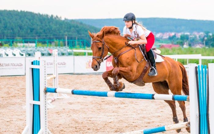 скачка на коне