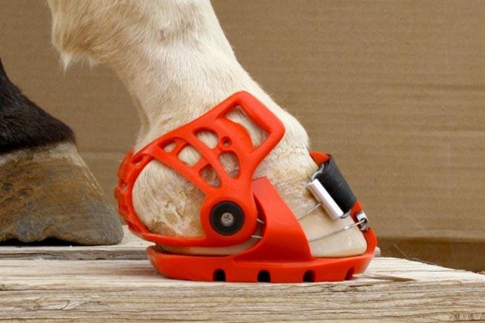 Ботинки-подковы