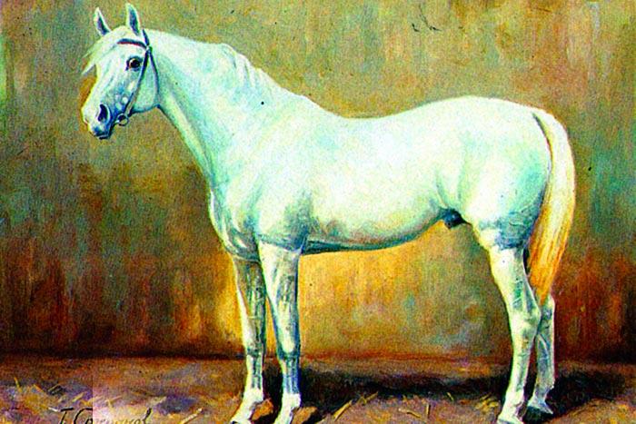Конь Сметанка