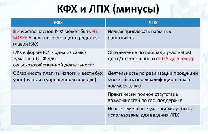 КФХ и ЛПХ минусы