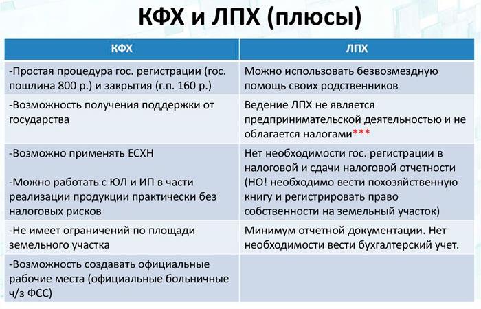 КФХ и ЛПХ плюсы