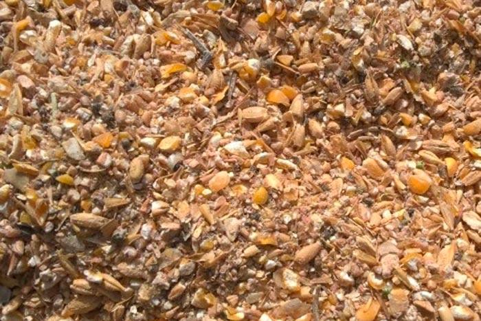 Дробленое зерно