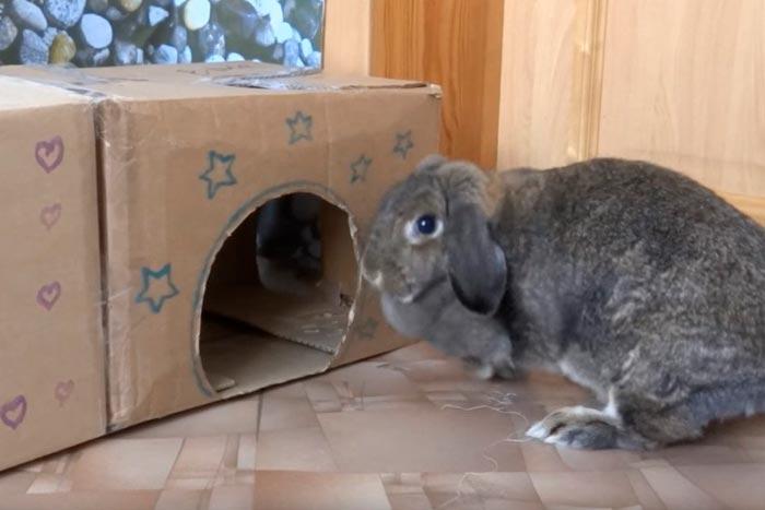 Готовый домик из коробок