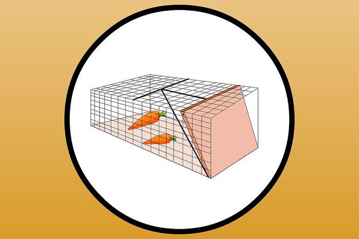 Приманка в клетке