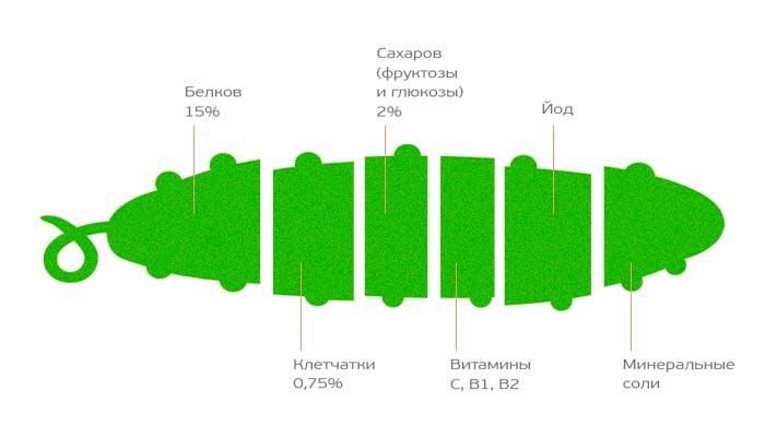 состав огурца